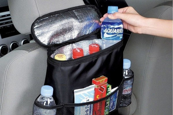 detailed review of the best back seat organizers.