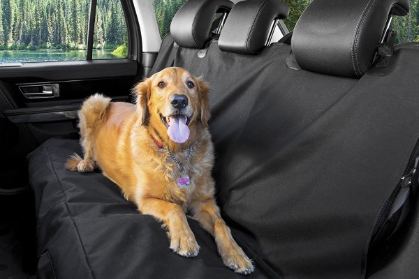 An in depth review of the best dog car seat covers in 2018