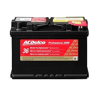 ACDelco 48AGM Professional