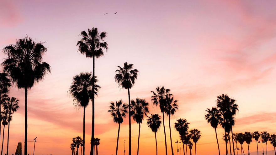 An in-depth guide on where to stop and what to see on your California road trip.